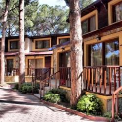 Imagine pentru Hotel Omer Holiday Resort Charter Avion - Kusadasi 2021