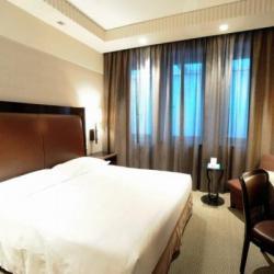 Imagine pentru Hotel Golden Palace Cazare - City Break Torino 2022