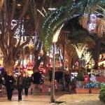 poza Petreceți un Crăciun inedit în Istanbul