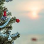 poza Bucurați-vă de un sejur de Crăciun special în stațiunea Kusadasi
