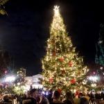 poza Bucurați-vă de un sejur de Crăciun animat în Atena
