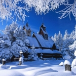 poza Petreceți un Crăciun încărcat de tradiție în Bucovina