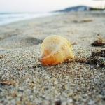 poza Septembrie - perioada potrivită pentru a vă bucura de un sejur pe plaja din stațiunea Albena