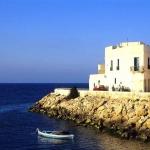 poza Cele mai populare hoteluri de pe cuprinsul orașului Mahdia