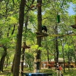 poza Cele mai populare parcuri de aventură din România