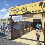 poza Camel Park