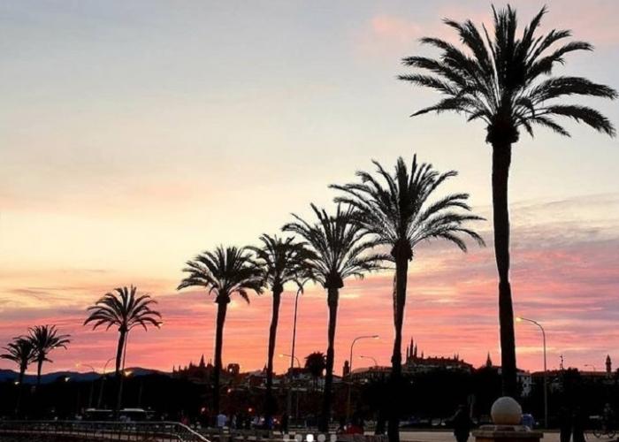 poza Vacanță în Palma De Mallorca, unul dintre cele mai fermecătoare orașe ale Spaniei