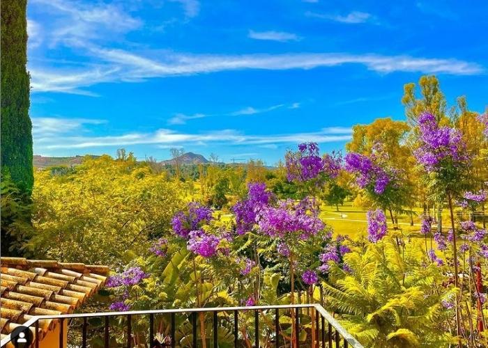poza Petreceți un sejur însorit în Costa del Sol